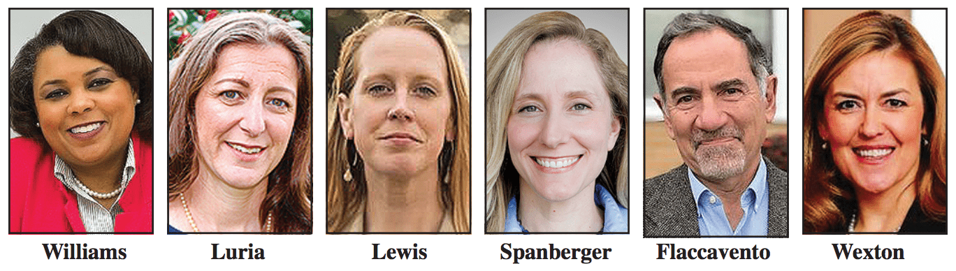 Women dominate congressional challenges all across Virginia