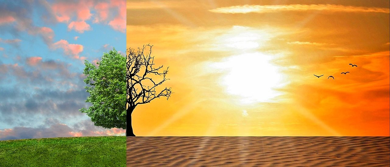 Exija la relajación de los límites de la energía solar en Virginia: apoye el proyecto de ley de libertad solar de Virginia de 2019