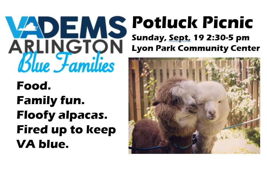 Arlington Blue Families Potluck Picnic (feat. Del. Danica Roem!)